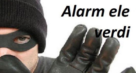 Alarm Ele Verdi