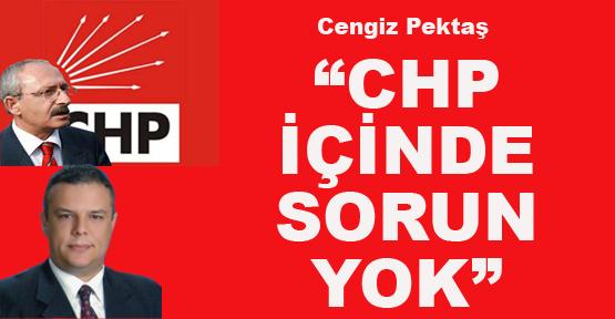 """CENGİZ PEKTAŞ: """"CHP İÇİNDE SORUN YOK"""""""