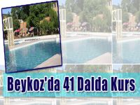 Beykoz'da 41 Dalda Kurs